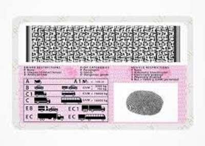Drives License